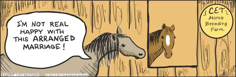 Friday quickies (plus horse sex) - The Comics Curmudgeon
